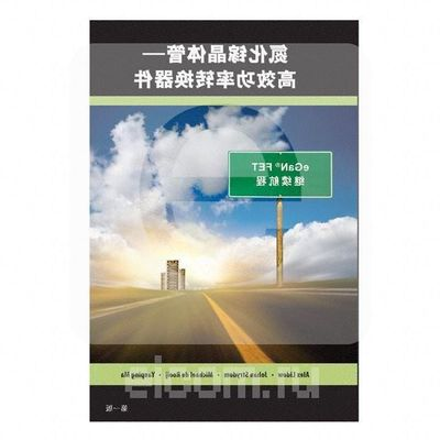 GAN FET BOOK SIMPLIFIED CHINES